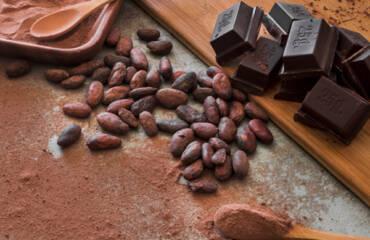 Abierta convocatoria para seleccionar las muestras que participarán en el Cocoa of Excellence 2021